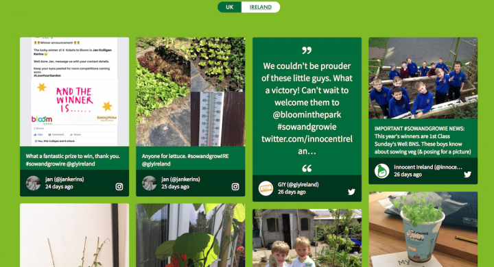 Screenshot of the embedded Sow and Grow social media wall for Ireland.
