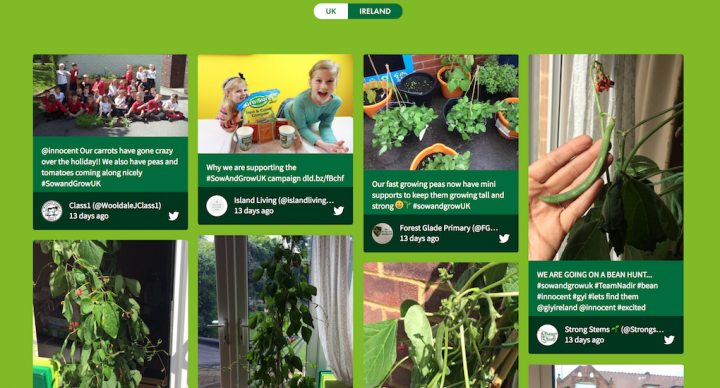 Screenshot of the embedded Sow and Grow social media wall for the UK.