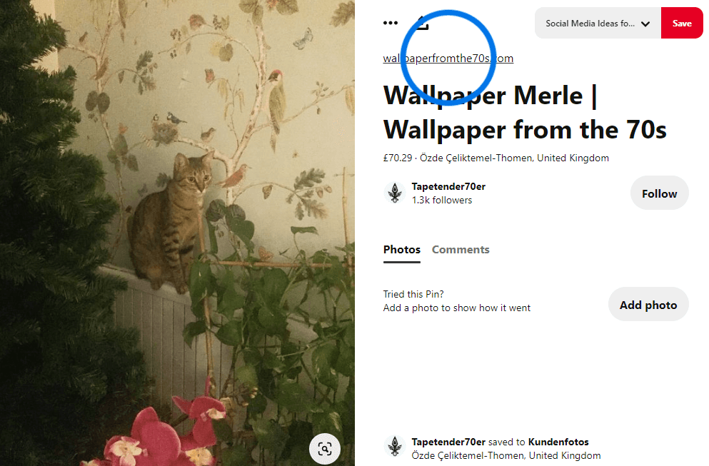 Wallpaper from the 70s Pinterest board showing the example of a customer pin photo with a cat sitting on a heating unit, with a wallpaper with a tree and birds in the background.